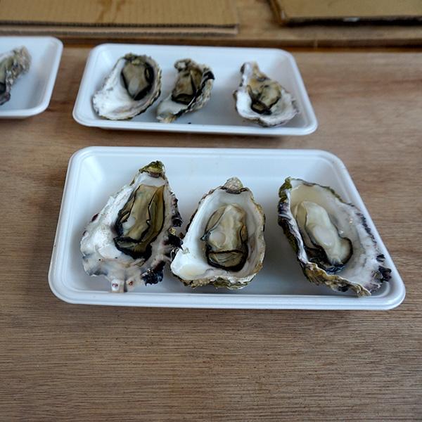広島産の生牡蠣