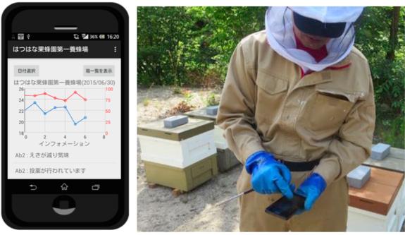 Bee sensing スマホで確認 はつはな果蜂園
