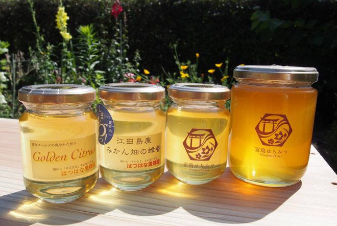 はつはな果蜂園のハチミツ