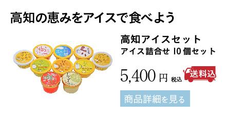高知アイスセット アイス詰合せ10個セット 5,400円