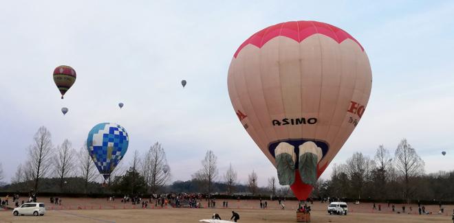 みよしバルーンミーティング2019の熱気球たち