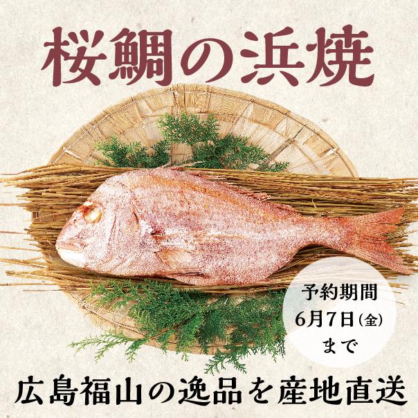 桜鯛の浜焼 広島福山の逸品を産地直送