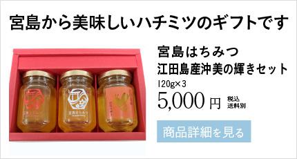 宮島から美味しいハチミツのギフトです 宮島はちみつ 江田島産沖美の輝きセット 120g×3 5,000円