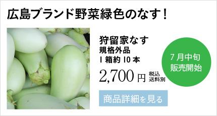 広島ブランド野菜緑色のなす!狩留家なす 規格外品 1箱約10本 2,700円