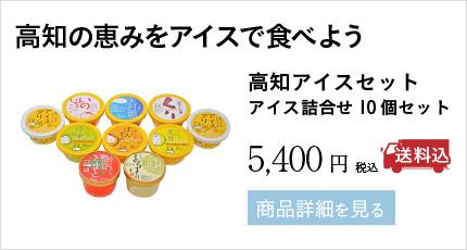 高知の恵みをアイスで食べよう 高知アイスセット アイス詰合せ10個セット 5,400円