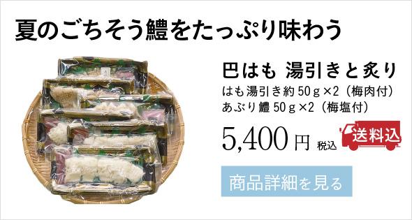 夏のごちそう鱧をたっぷり味わう 巴はも 湯引きと炙り はも湯引き約50g×2(梅肉付) あぶり鱧50g×2(梅塩付) 5,400円