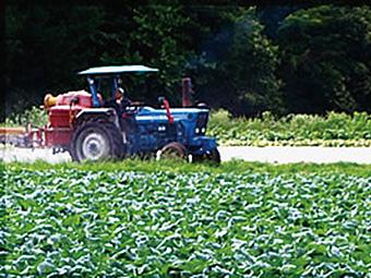 できる限り少 ない農薬(県慣行の50%)に抑え、 どんな農薬を、いつ、どのくら い使用したのか、記録を残し管 理を徹底しています。