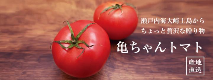 瀬戸内海大崎上島からちょっと贅沢な贈り物 亀ちゃんトマト 産地直送の新鮮トマトです!