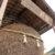 新たな観光名所?金冠黒松で有名な岩国の村重酒造に日本一の杉玉あり
